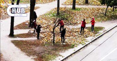 бюджетники сгребают опавшие листью