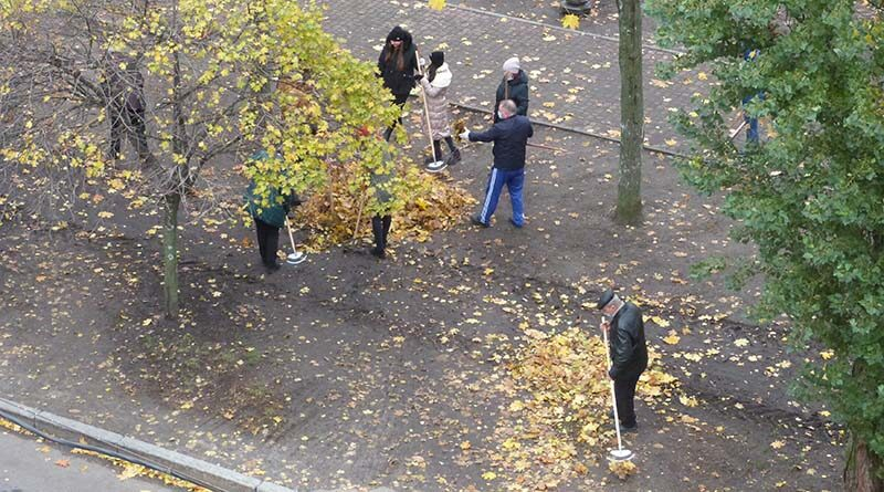 Люди сгребают листья
